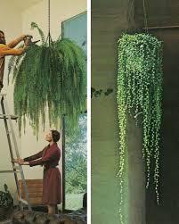garden hanging garden ideas