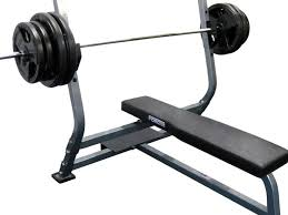 Weider 215 Bench Best 25 Bench Press With Weights Ideas On Pinterest Shoulder