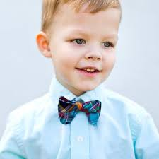 boys blue ridge bow ties