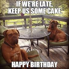 Birthday Cake Dog Meme - cracking birthday jokes huge list of funny messages wishes