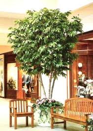 looking for an artificial tree name the shape size and foliage