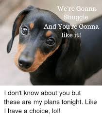 Snuggle Meme - 25 best memes about snuggle snuggle memes