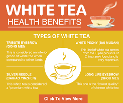 17 proven white tea benefits that will you
