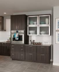 glass kitchen cabinets lowes bellagio stainless steel with frosted glass schuler