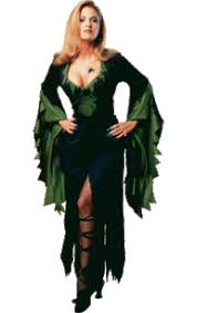 witch costumes witch fancy dress jokers masquerade