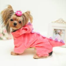 yorkie halloween costumes search on aliexpress com by image