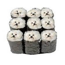 Canine Creature Comforts Creature Comforts Poochi Sushi Canine California Roll Natural