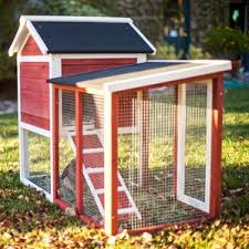 Indoor Hutch Rabbit U0026 Bunny Cages You U0027ll Love Wayfair