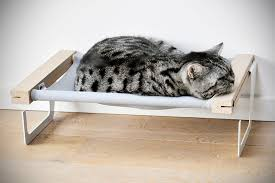 woozy is the first cat hammock that lets you hang on the radiator