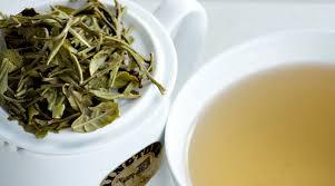 Teh Putih teh putih manfaat teh putih untuk kecantikan dan kesehatan