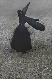 84 Best Witches Images On Pinterest Witches Halloween Witches by 84 Best Witches Images On Pinterest Halloween Witches Happy