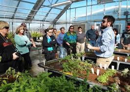 how to get usda certified us ok organic usda certification for aquaponics incubator program