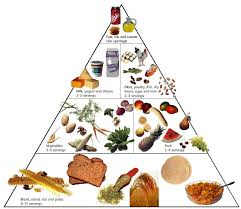 food combining for optimal health exercise eat rest repeat