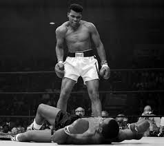 float like a butterfly sting like a bee a personal reaction to