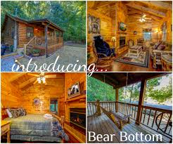 bear themed home decor new cabin called