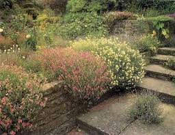 Rock Garden Landscaping Ideas Wall Rock Garden Ideas Wall Rock Garden Ideas Howstuffworks