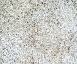 texture of a white carpet with long pile stock photo picture and