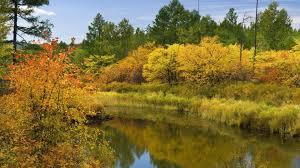 1920x1080 fall wallpaper download wallpaper 1920x1080 autumn river trees bushes