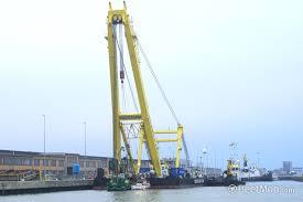 Cormorant Floating Crane Imo 7328073