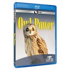 nature owl power blu ray av item shop pbs org