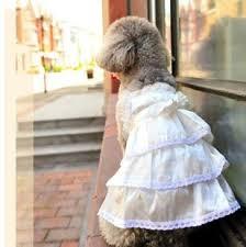 Dog Wedding Dress Dog Wedding U0026 Formal Maple Leash