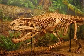 postosuchus wikipedia