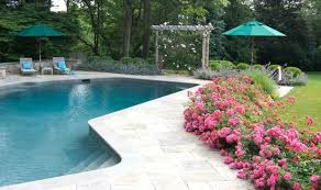 Landscaping Around Pool 12 Ways To Landscape Using Flower Carpet Roses Your Easy Garden