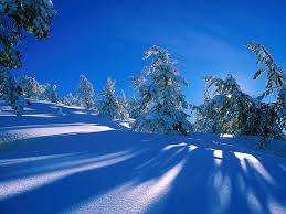 winter backgrounds scenes group 61