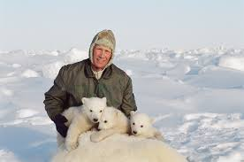 how you can help polar bears in the arctic today u2013 national