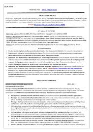 Technical Resume Summary Examples by Impressive Design Resume Information 5 Information Technology