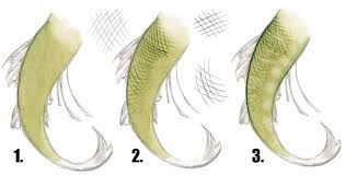 draw paint mermaid scales impact books
