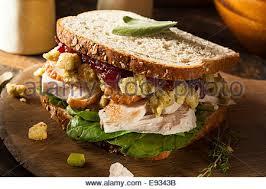 leftover thanksgiving dinner turkey sandwich with stock