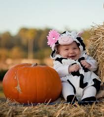 Babys Halloween Costume Ideas 20 Baby Pumpkin Costume Ideas Baby