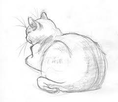 best 25 simple cat drawing ideas on pinterest simple animal