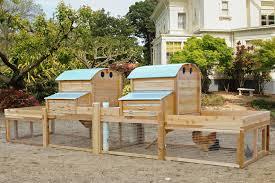best backyard chickens triyae com u003d best urban backyard chickens various design