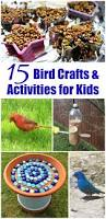 15 outdoor activities backyard birds for kids edventures with kids