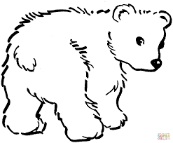 cute brown bear cub coloring page free printable coloring pages