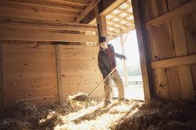 how to muck out or clean a horse u0027s stall