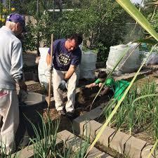 Houston Urban Gardeners - urban harvest earth day workday a big success blog