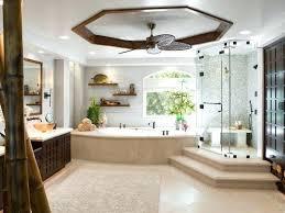 Houzz Modern Bathrooms Traditional Master Bathrooms Bathroom Bathtub Ideas Modern