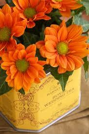 Tin Flower Vases Repurposed Tea Tin Flower Vases A Homemade Living