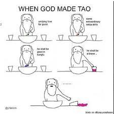 When God Made Me Meme - when god made tao allkpop meme center