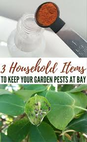 892 best garden pest control images on pinterest
