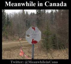 Canadian Meme - have a great canadian thanksgiving dinner jpg 402 604 let s