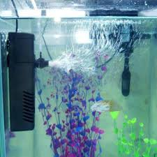 a few things to know about the different types of aquarium water