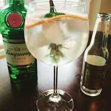 cocktail recipe spanish style gin tonica professor cocktail