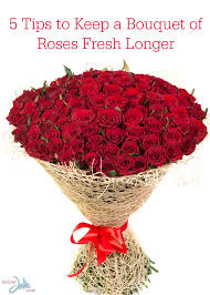 Fresh Cut Flower Preservative by 5 Tips To Keep A Bouquet Of Roses Fresh Longer Sober Julie
