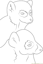 ring tailed lemur face coloring page free lemur coloring pages