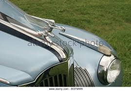 packard ornament stock photos packard ornament stock