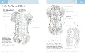 anatomy coloring book download the anatomy student u0027s self test colouring book dr kurt h